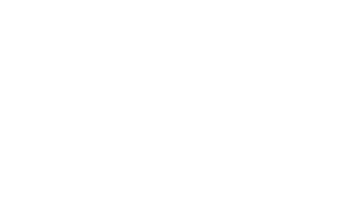 Evolution Fireplaces